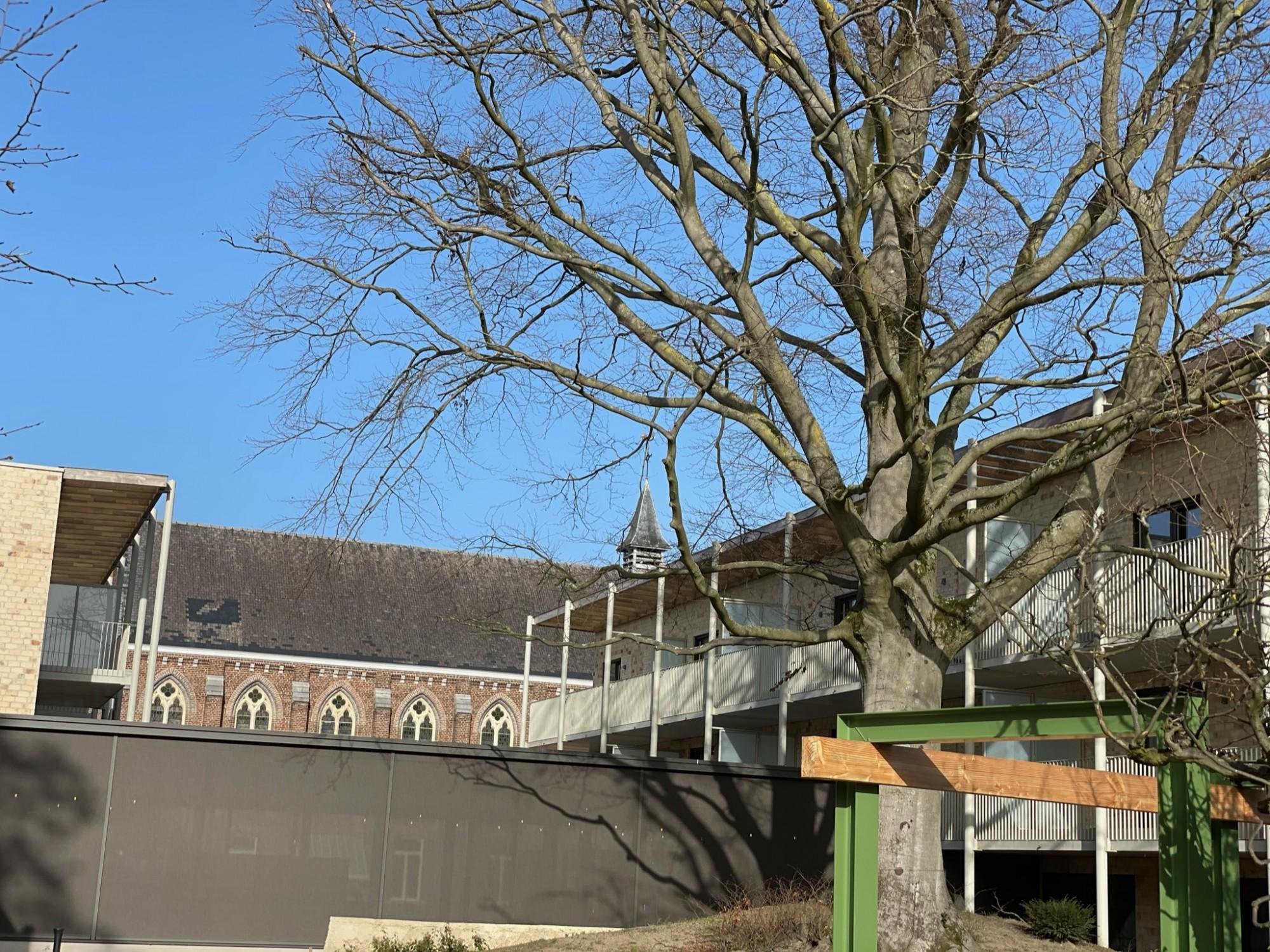 Angelahof - Diepenbeek